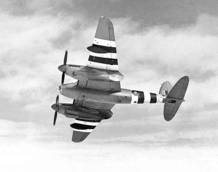 Two-Stage Mosquito History